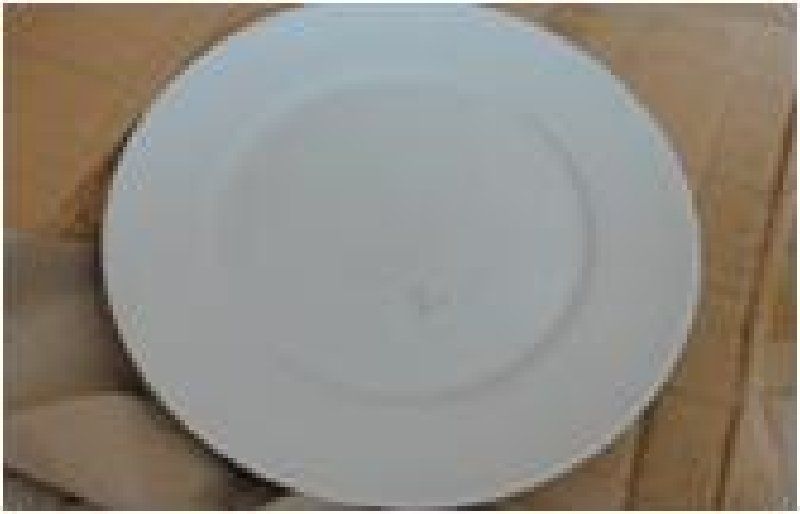 White Dinner Plate 10.5inch UC-3289